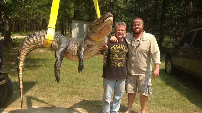 Brandon Maskew of Ellisville set a new female alligator record with his Aug. 30 catch. The alligator measured 10 feet and weighed 295.3 pounds. It was captured on the Pascagoula River.