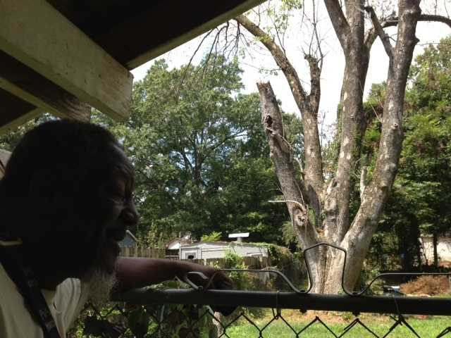 Eddie Taylor says he knows the tree is rotten, but there's little he can do.