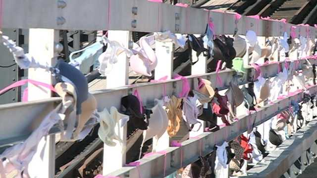 This year, 16,000 bras were donated.