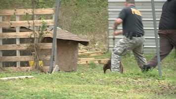 Meanwhile, animal control officers worked to secure the first dog.