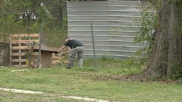 Two dogs had been roaming the Vardaman Street area, residents told police.