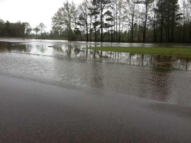 Dabbs Creek overflowed its banks onto Highway 49.