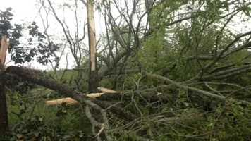A possible tornado touched down near Collins early Monday morning.