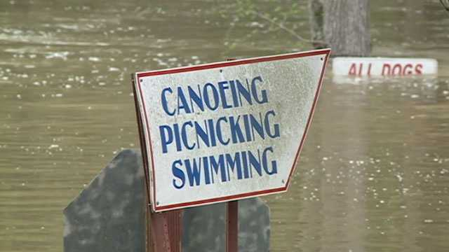 d'lo-flooding-6.jpg