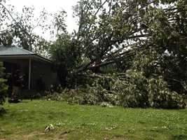 A tree fell on a house on Childre Road in Pearl.