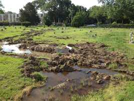 Headstones are toppled and muddy tracks left behind at a Jackson cemetery.