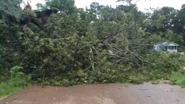 Storms move through central Mississippi knocking down trees and power lines.