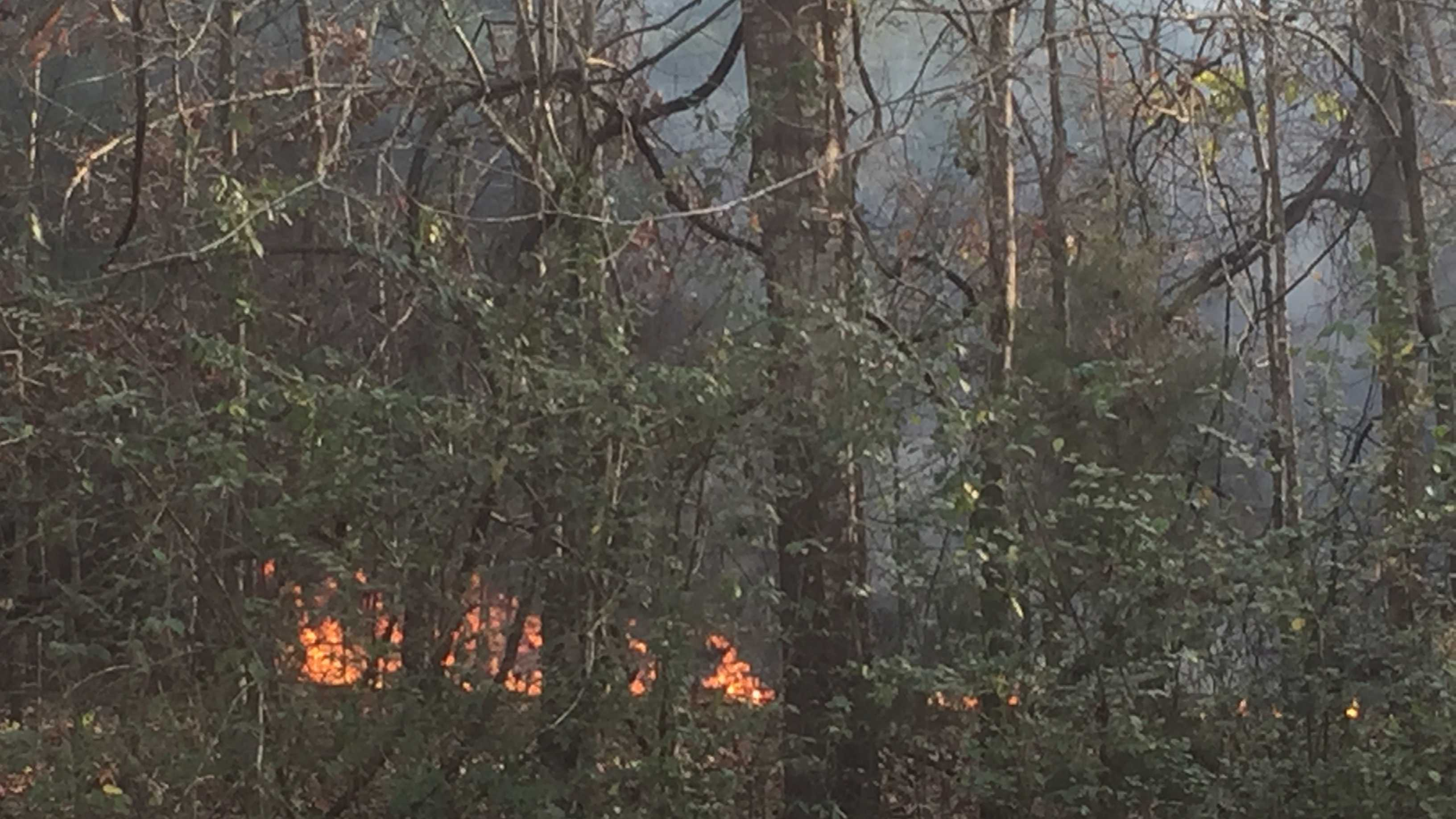 Firefighters are on the scene of a wildfire in Terry.