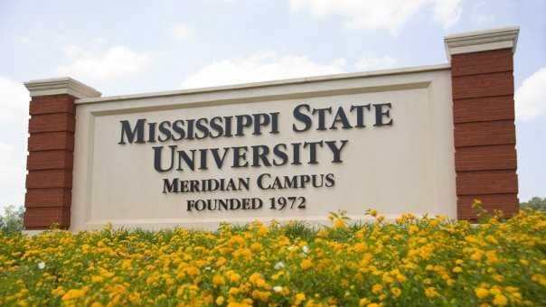 Spring flowers blooming in front of MSU Meridian sign.