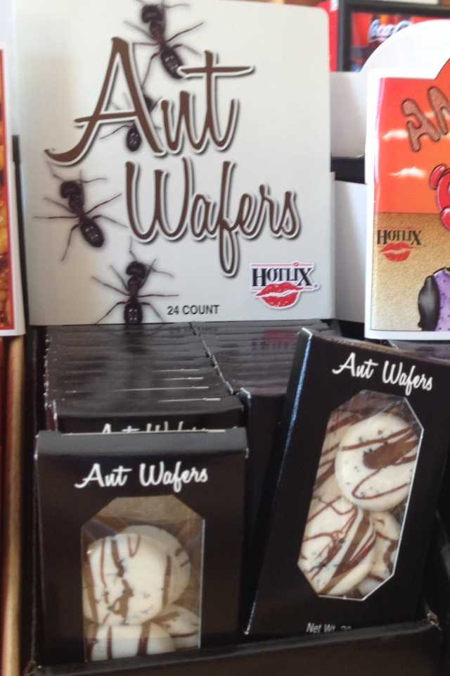 Chocolate covered ants and scorpion-filled lollipops are showing up in Easter baskets.