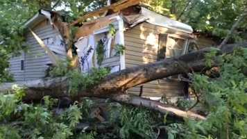 A tree fell onto a mobile home on Stubbs Road in Terry before midnight Sunday.