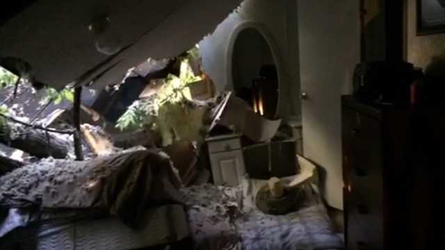 The tree fell on the bedroom, where the couple had been sleeping.