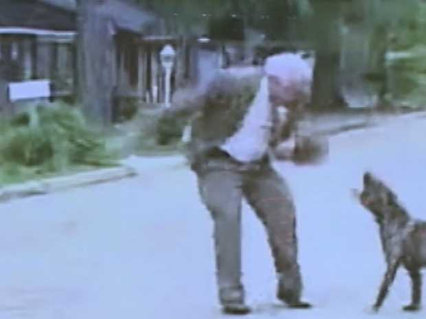 Bert once took on a pit bull.