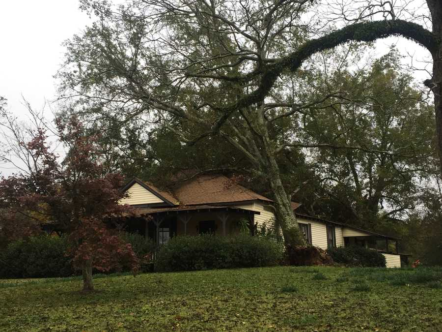 Overnight storms knocked a tree onto a house in Bovina.