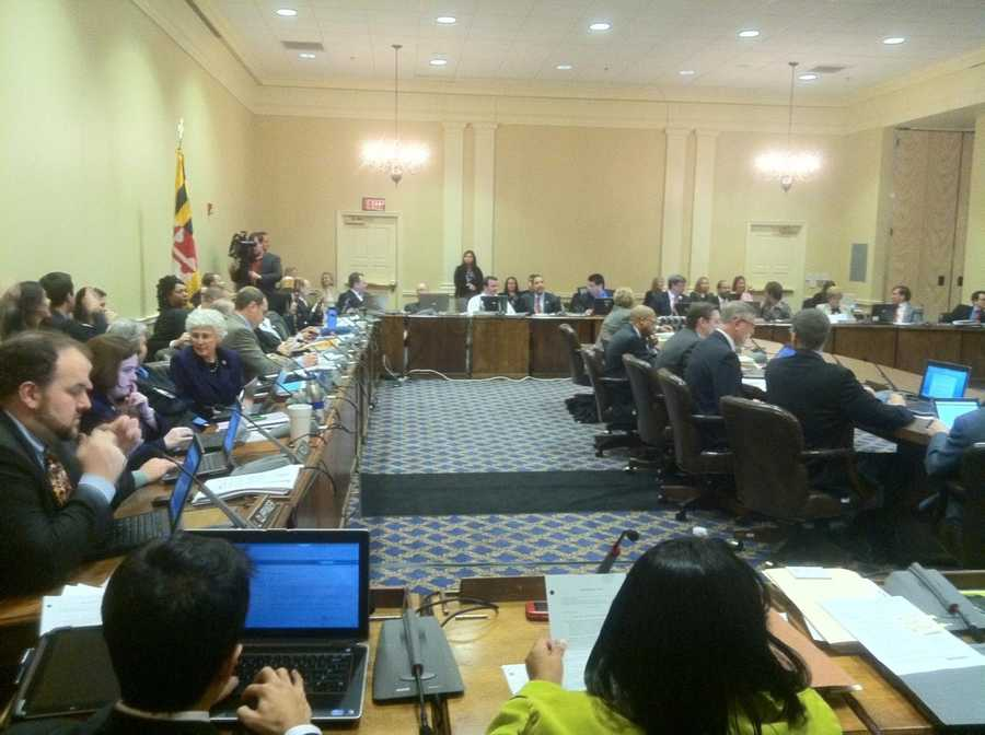 A joint committee of Maryland lawmakers hears testimony in regard to the state's same sex marriage legislation.