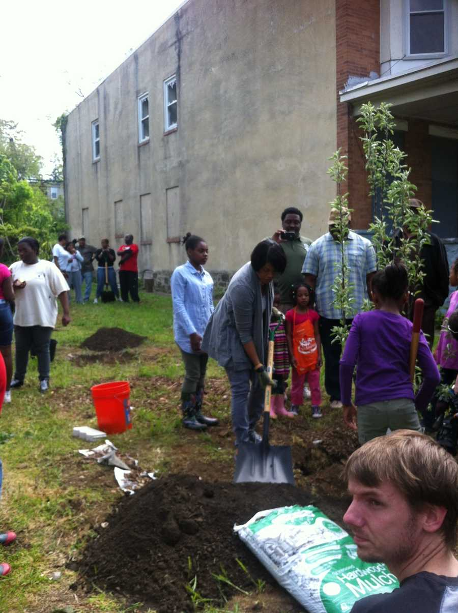 Launched in August 2011, Power in Dirt is the City's first comprehensive plan to specifically address vacant lots by engaging residents and organizations in their sustainable revitalization.