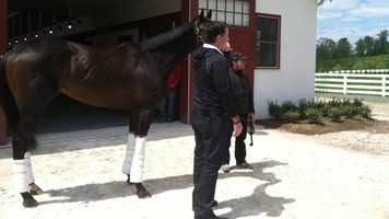 Plank talks about his chance of winning the Preakness Stakes with hopes that Tiger Walk will win it all.