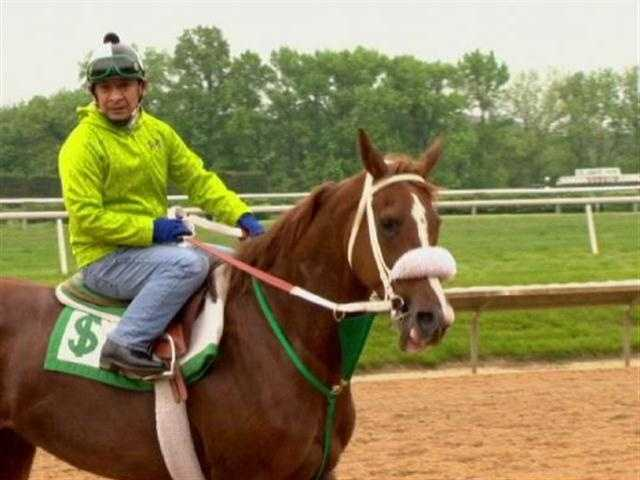 Dixies Valentine, a horse owned by the royal family of Abu Dhabi, takes to the tracks during Preakness in a first-of-its-kind race. (Watch Rob Roblin's Report from Delaware) | WBAL-TV