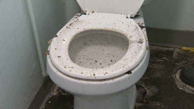 """""""In the bathroom, it exploded out of the toilet,"""" one resident said."""