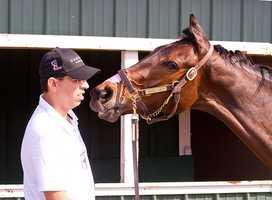 Oaks Lily |Jim McCue\Maryland Jockey Club