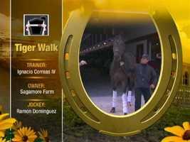 Tiger Walk Post: 1 (M-L Odds 30)