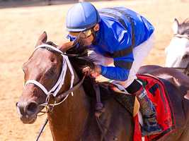Hamazing Destiny surges past the leaders to win the $100,000 Maryland Sprint Handicap.