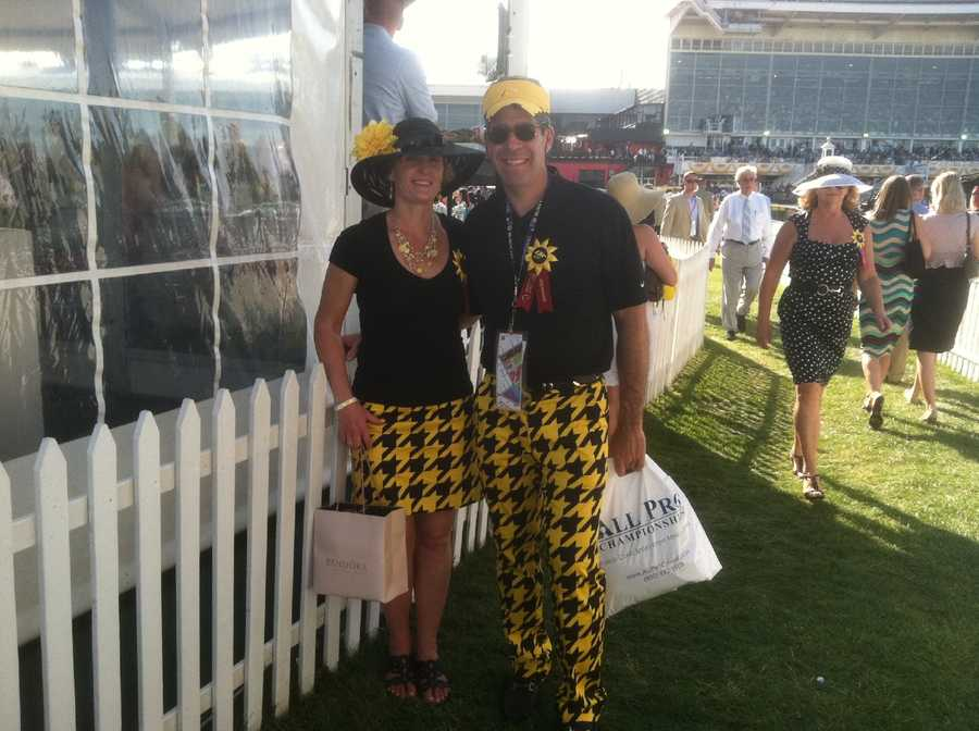 Now, these are some serious Black-Eyed Susan fans!