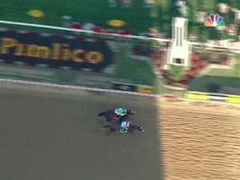 A fantastic finish that took the race to the very end -- theextra lunge by I'll Have Another makes for a photo finish by a neck.