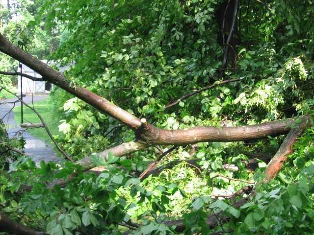 New Windsor damage.