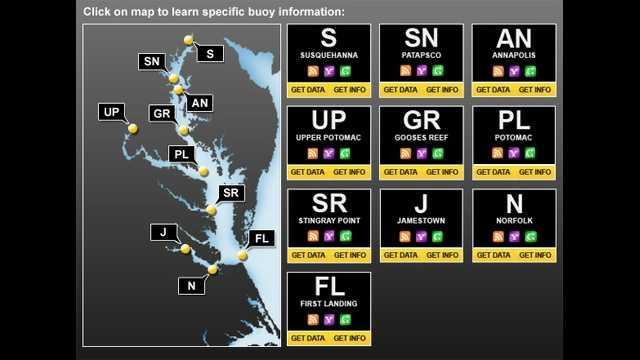 jellyfish buoy online map