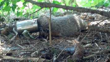 Two teens in Cecil County helped save a groundhog that got a soup-sized can stuck on its head.