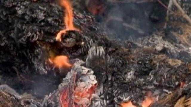 Kent Island Fire Cause
