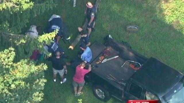 Fallston tree accident