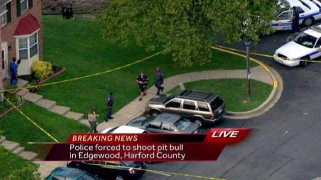 Officials said a Harford County Sheriff's deputy was forced to fatally shoot a pit bull in Edgewood.