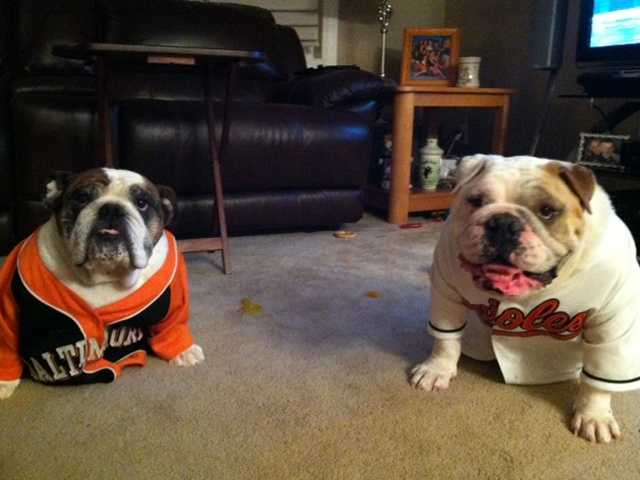 Lulu and Ray support the O's!