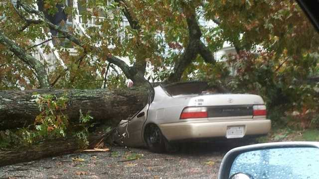 Storm damage in Parkville, Baltimore County