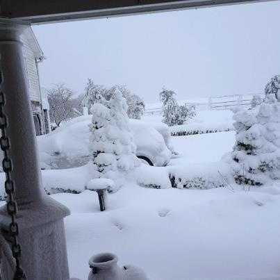 Heavy snow in Finzel, western Maryland.