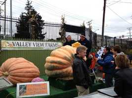 Valley View Farms customers are invited to guess how many seeds are in the big pumpkin for a chance to win a $300 gift card from Valley View.