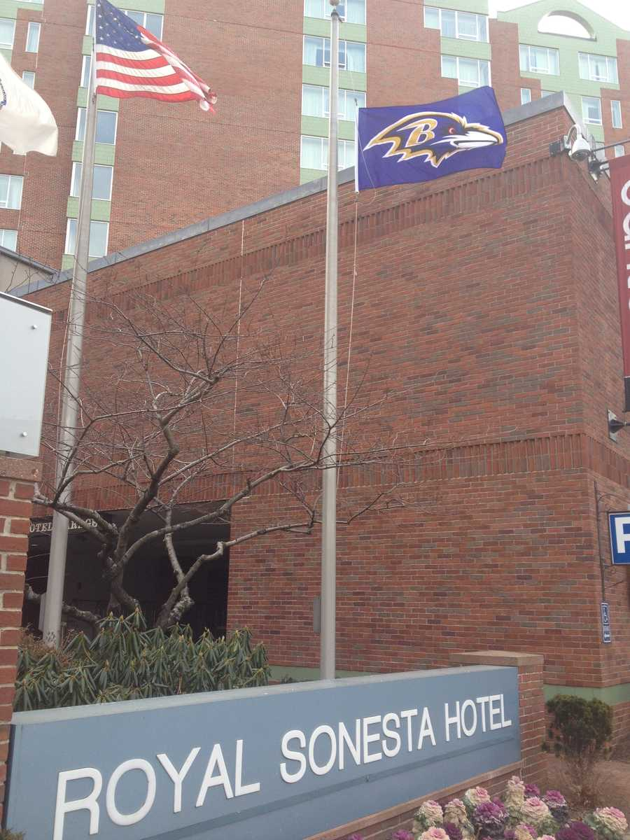 A Baltimore Ravens flag flies over the Royal Sonesta Hotel in Boston after the team's 28-13 victory over the New England Patriots on Sunday as part of a losing bet with the Royal Sonesta Hotel in Baltimore.