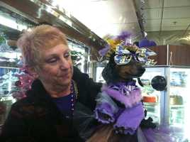 Fan at Double T Diner in Perry Hall gets her pet into the purple pride spirit.