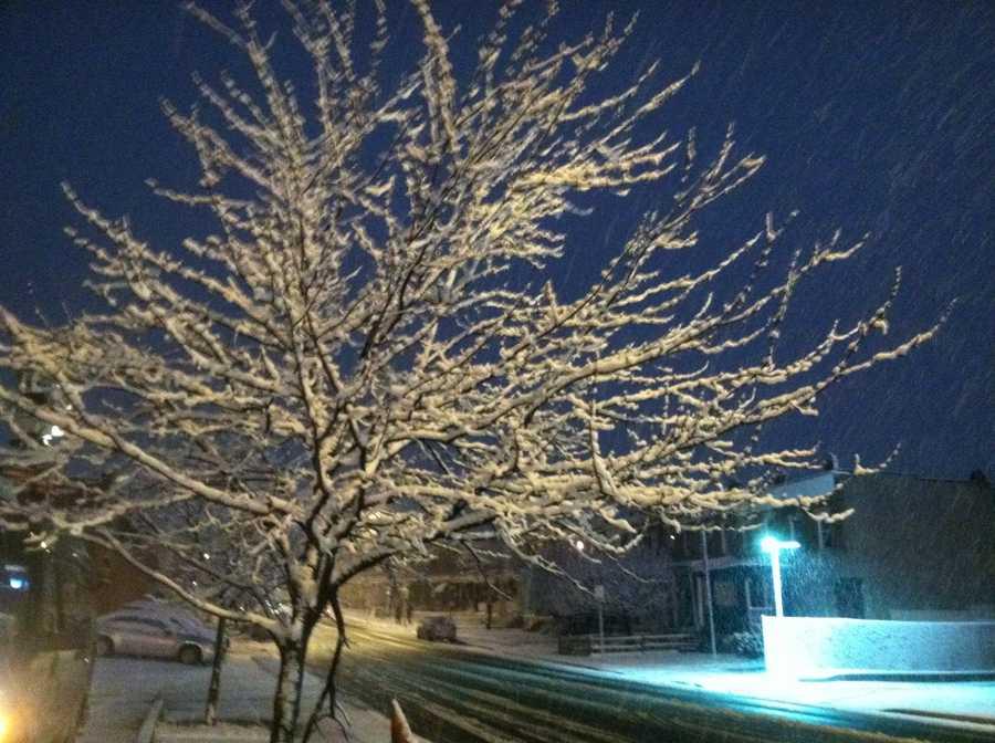 Snow on Coldspring Lane in Baltimore.