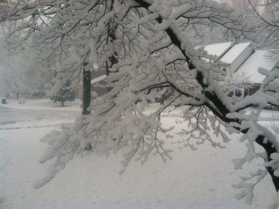 In the Eldersburg, Union Bridge and Westminster areas of Carroll County, 5 inches of snow was recorded. There were 3 inches reported in Woodbine.