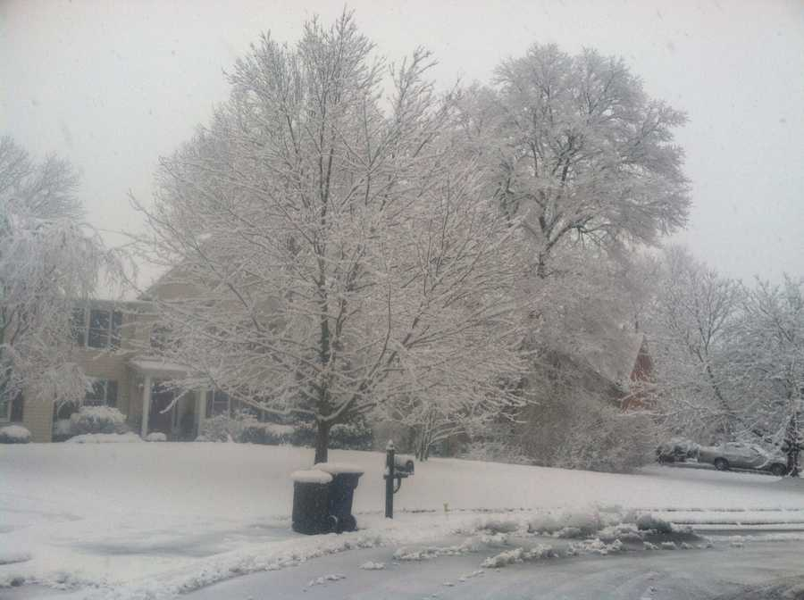 Around 3 to 4 inches of snow were reported in Eldersburg by trained weather spotters.