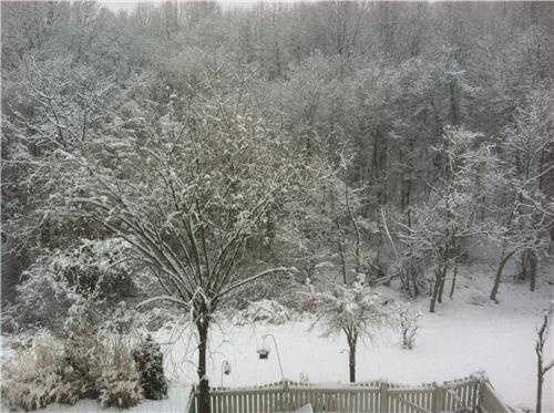In Forest Hill, Harford County, about 3 inches of snow were recorded.