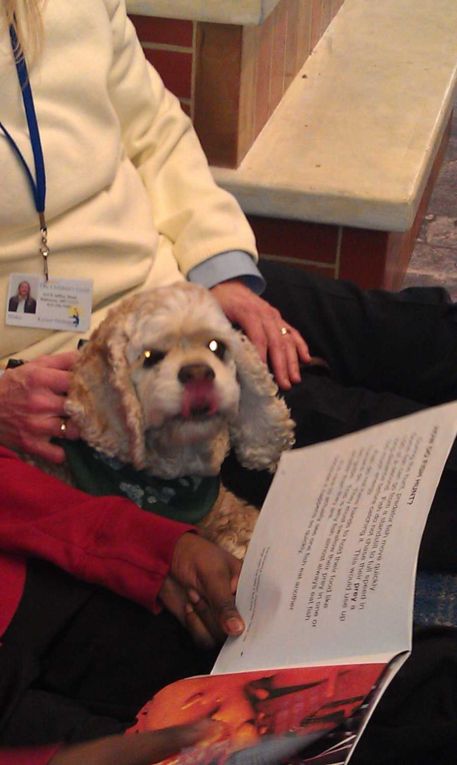 Kaiser-Mohondro said research shows that children who have read to a therapy dog increased their literacy skills by 50 percent in the first month. Read the story.