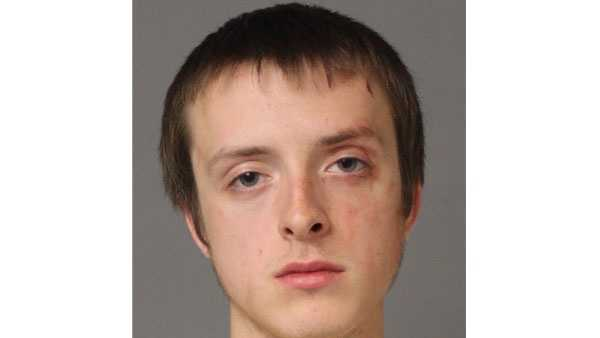 Police say 18-year-old Eric Christopher Halstad was arrested and faces charges in connection with a stabbing in Crownsville.