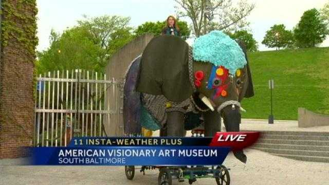 Next up: She gets to ride a massive elephant!