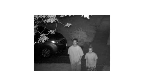 suspected-vandals.jpg