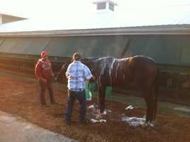 Titletown Five gets a bath on Friday morning.