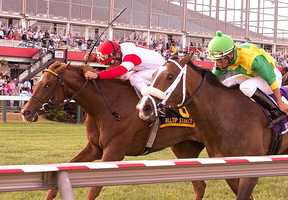 Kenneth L. and Sarah Ramsey's Emotional Kitten arrived late on the scene, reaching the front in the last two jumps to win the $100,000 Hilltop Stakes for 3-year-old fillies, the finale on the 13-race Black-Eyed Susan Day card at Pimlico.